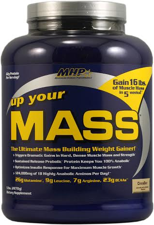 UP YOUR MASS 2.2kg фудж браун (MHP)США